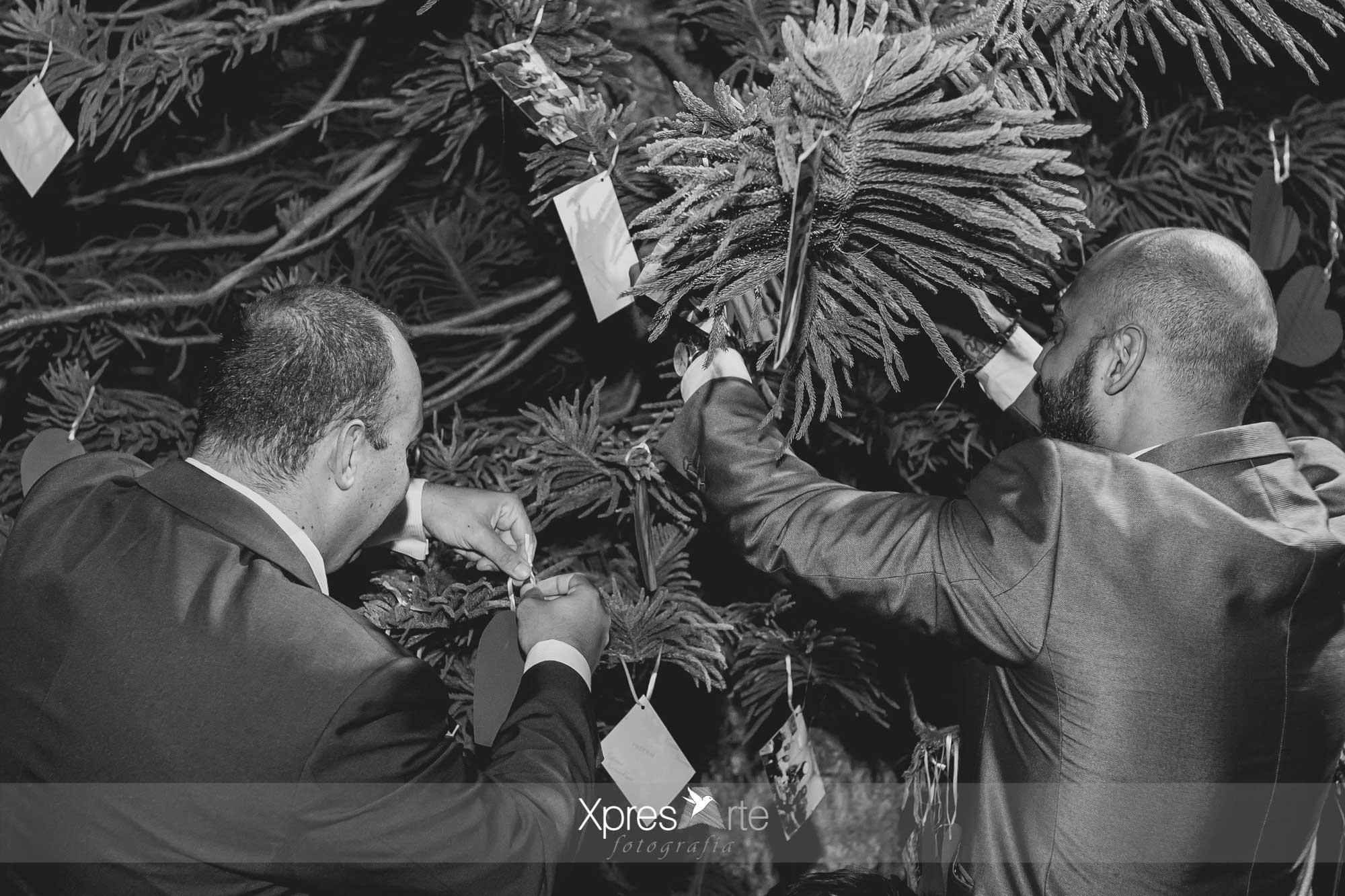 fotos-de-boda-en-sevilla-paco-y-tamara-76