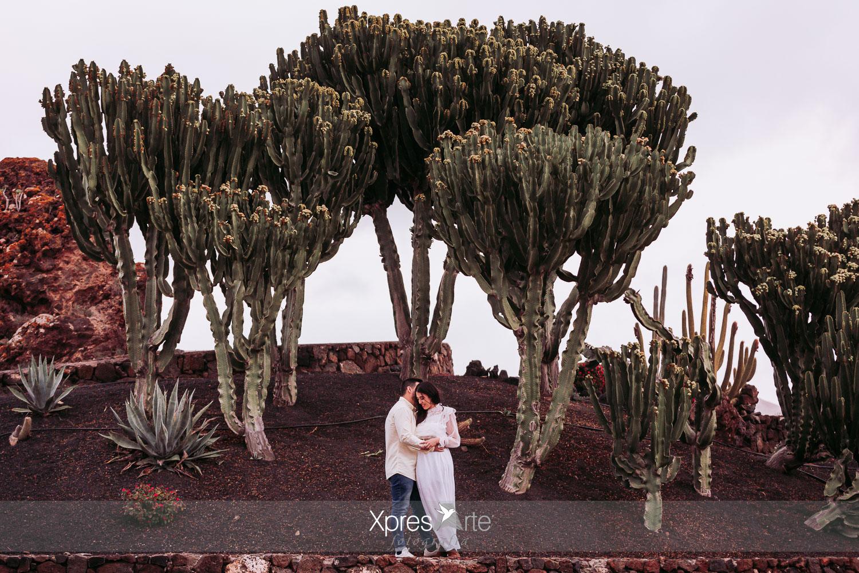 novios entre los cactus