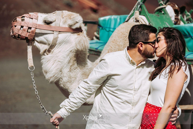 beso camellos lanzarote